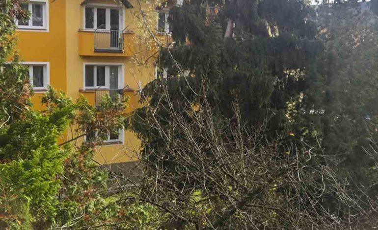 Vichřice na Mladoboleslavsku