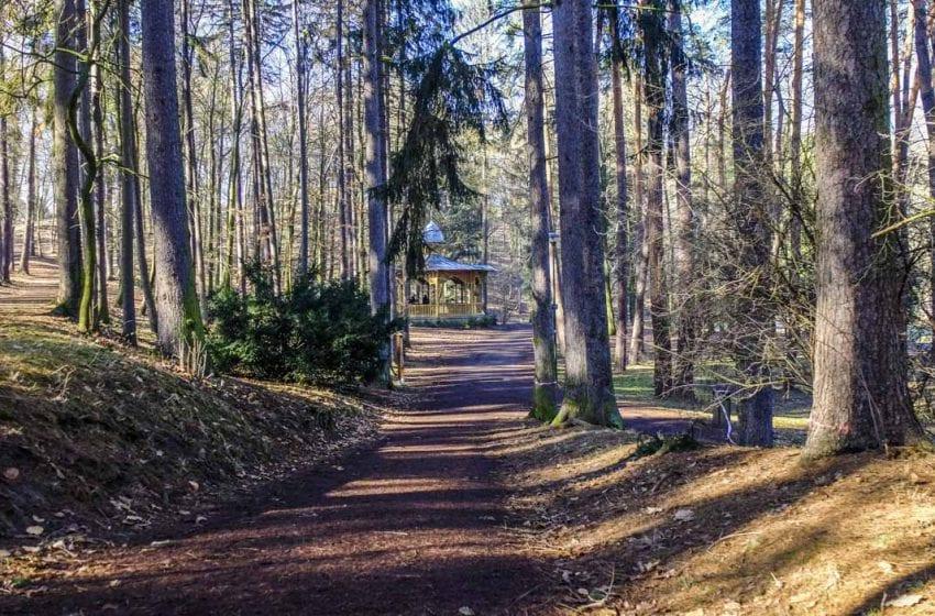 Ochránci přírody apelují na vedení města kvůli obnově parku Štěpánka