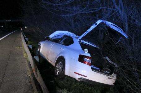 Osobní auto se na D10 střetlo se stádem divočáků