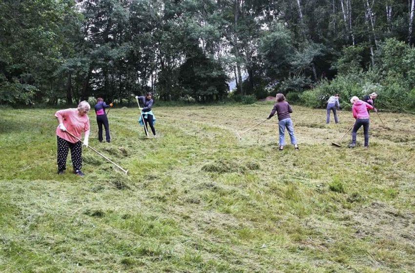 Dobrovolníci pomáhají pečovat o botanicky nejcennější louky Mladoboleslavska