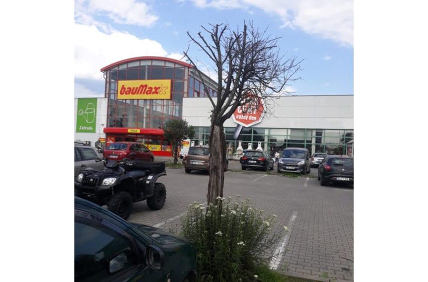 ČSOP Klenice vyzvala Baumax, aby se lépe staral o stromy na parkovišti