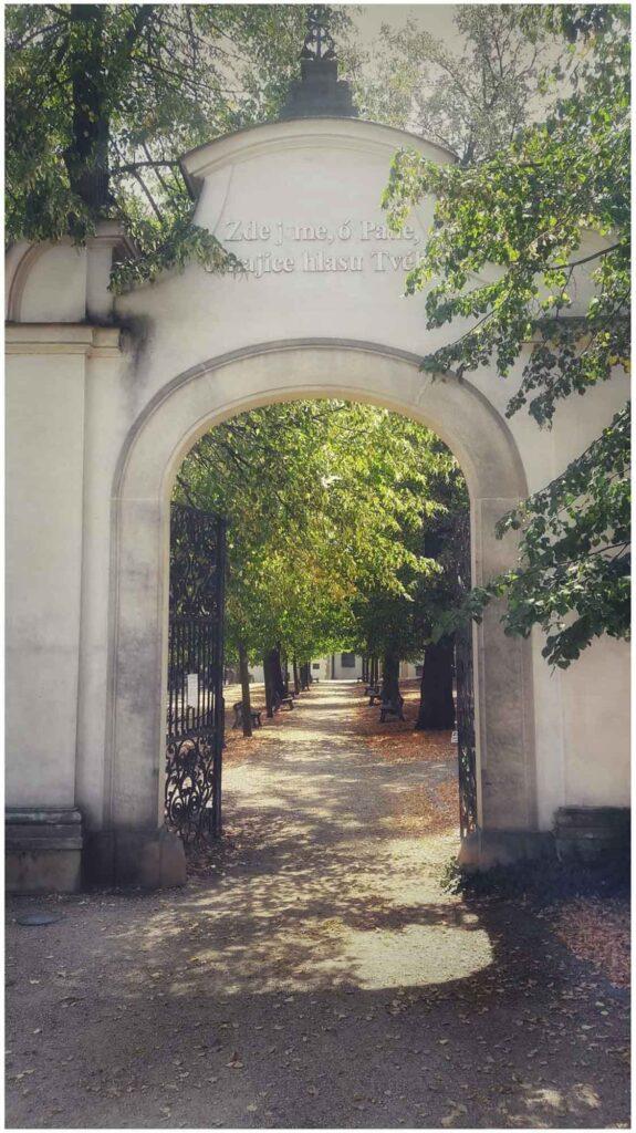 Havelský hřbitov v Mladé Boleslavi / Renata Zemanová
