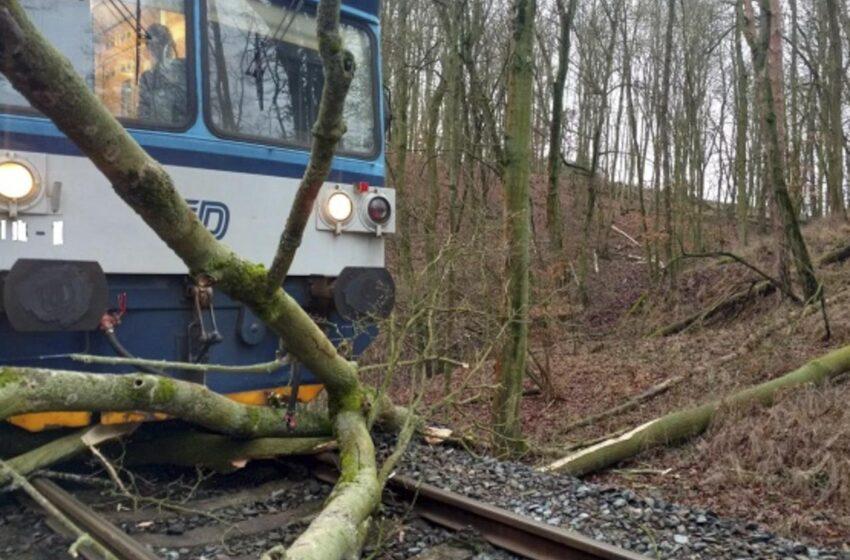 Padající stromy na Mladoboleslavsku zastavily dva vlaky