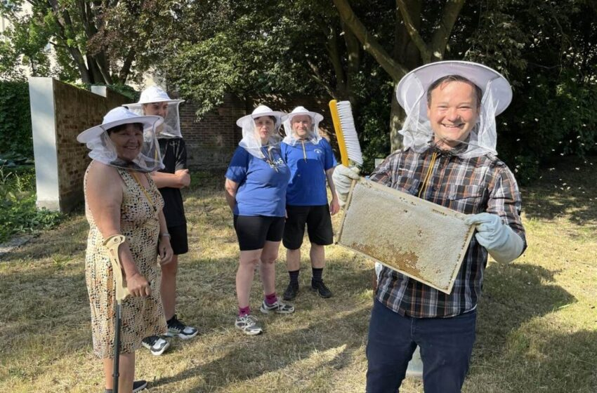 Mladá Boleslav má svůj první městský med