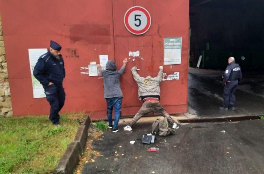Strážníci v Mladé Boleslavi řešili napadení i pokus o krádež